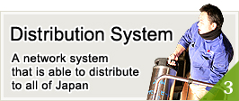 3.  Distribution System